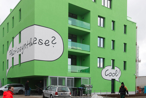 """The Clever Treefrog, Speech-Bubble-Facade""; 2013, Foto: Foto: Paul Ott; Sammlung SPLITTERWERK"